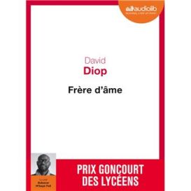 Livre-Frere-d-ame-diop